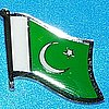 Pakistain Flag Pin, Anstecknadel
