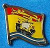 New Brunswick Flag Pin