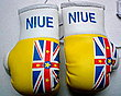 Niue Boxing Gloves, Mini Gloves Niue, Kikboxhandschuh Niue