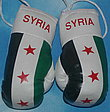 Syria Mini Boxing gloves, Unofficial Flag, Kickhandschuhe /syria