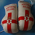 Northern Ireland Boxing gloves, Kickboxhandschuh  Nord Ireland