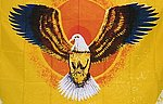 Flying Eagle Flag, Fahne mit Adler