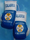 Calabria Mini boxing gloves,rear view mirror mascot,