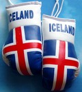 Iceland Mini boxing gloves,rear view mirror mascot Iceland,